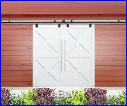 Double Sliding Barn Door Hardware Box Track Wall Mount Kit for Exterior Door